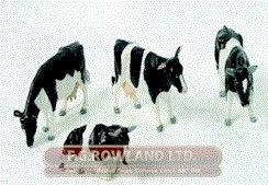 FRIESIAN CATTLE SET